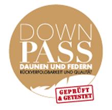 Logo Down Pass