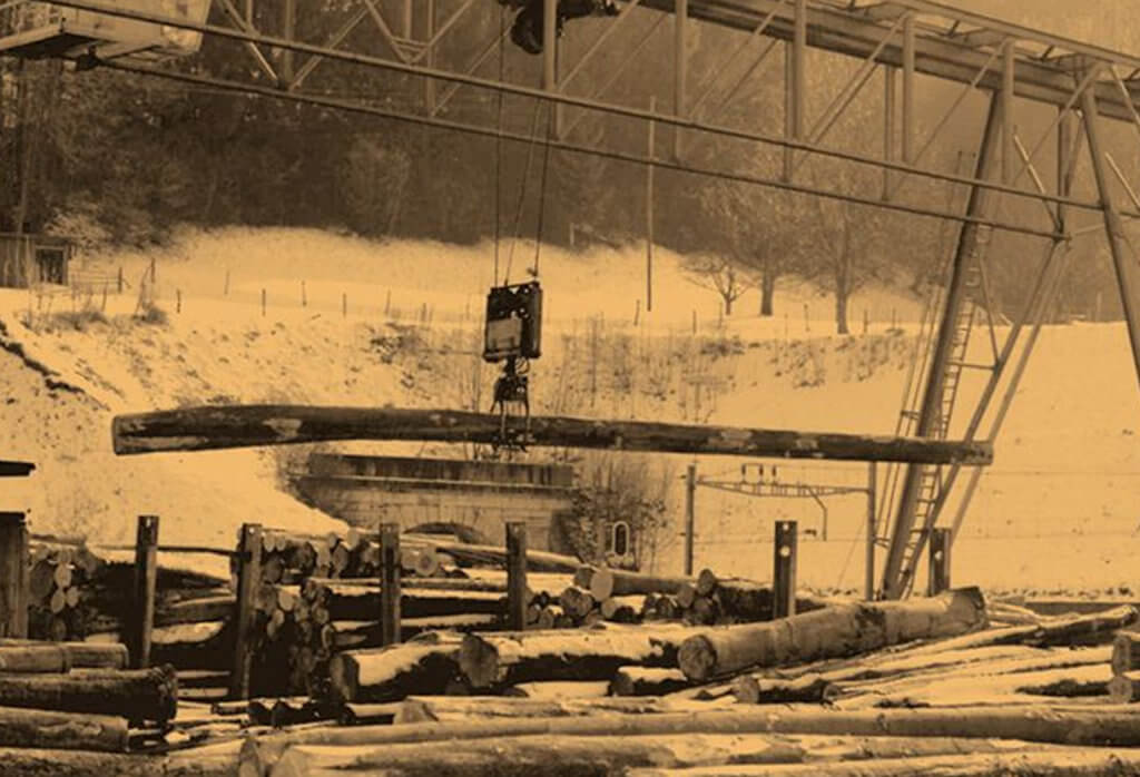 Hasena Geschichte Holzproduktion